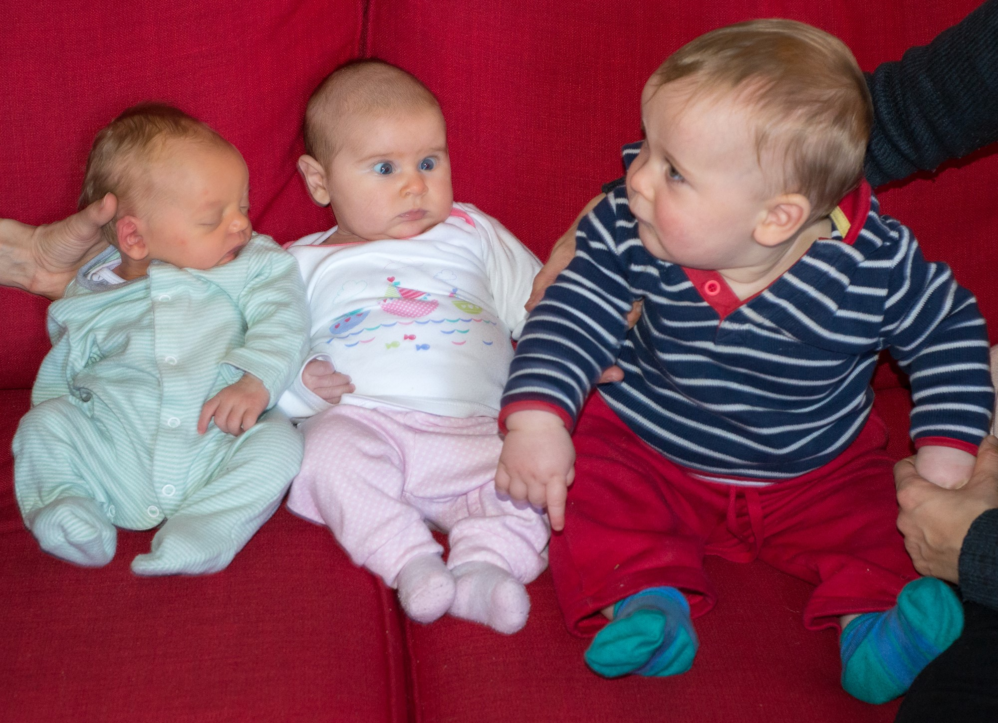 The Stile babies: Thomas (left) meets Hannah (Andrew's daughter, centre) and Danny (Kate's son, right)